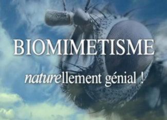 Sciences en images : Biomimétisme, les matériaux du futur