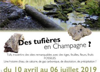 Des Tufières en Champagne ?