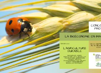 La bio-économie en image – l'agriculture durable